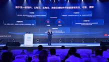 华为徐直军:SaaS模式孵化全球软件领军企业