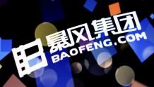 暴风集团收关注函:需说明冯鑫被批捕对公司影响