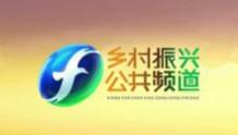 福建电视台乡村振兴·公共频道开播