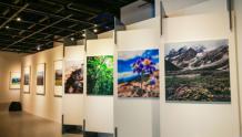 高通骁龙影像展:与世界分享你的视界